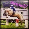 cheecko27