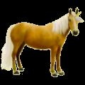 Unicorn Mustang Dun