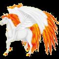 Pegasus Paint Horse Black Tovero