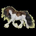Horse Paint Horse Liver chestnut Overo