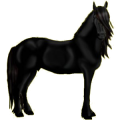 Horse Hanoverian Bay