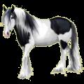 Pegasus Paint Horse Black Overo
