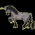 Unicorn Arabian Horse Black