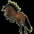 Riding Horse Hackney Cherry bay