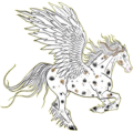 Pegasus Appaloosa Bay Spotted Blanket