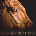 lυminous